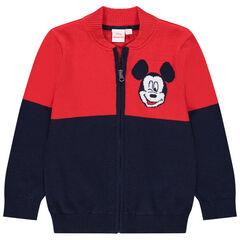 Ζακέτα πλεκτή  με σχέδιο  Mickey Disney