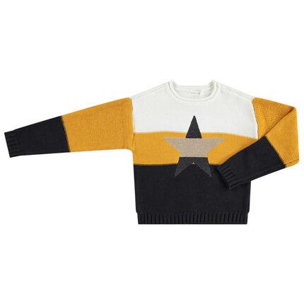 Πλεκτό πουλόβερ με αστεράκι