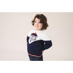 Πλεκτό πουλόβερ με λεπτή βελουτέ επένδυση και ζακάρ λύκο